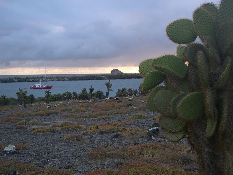 Galapagos-051