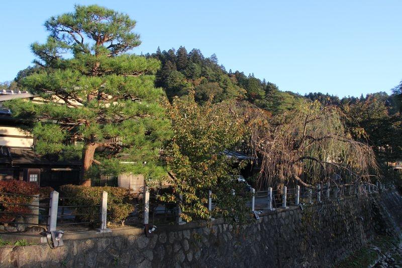 Japon 145