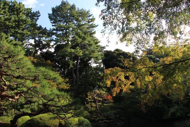 Japon 294