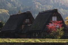 Japon 154