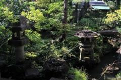 Japon 174