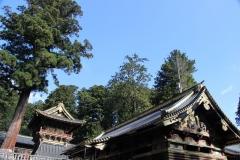 Japon 205