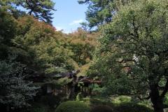 Japon 288