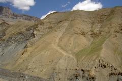 Ladakh 043