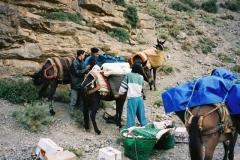 Maroc 2003 003