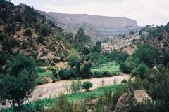 Maroc 2003 014