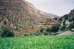 Maroc 2003 015