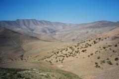Maroc 2003 022
