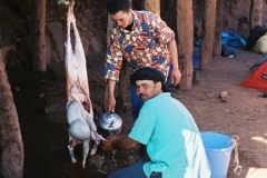 Maroc 2003 035