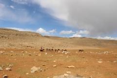 Maroc 2017 070