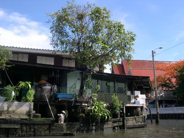 Bangkok 024