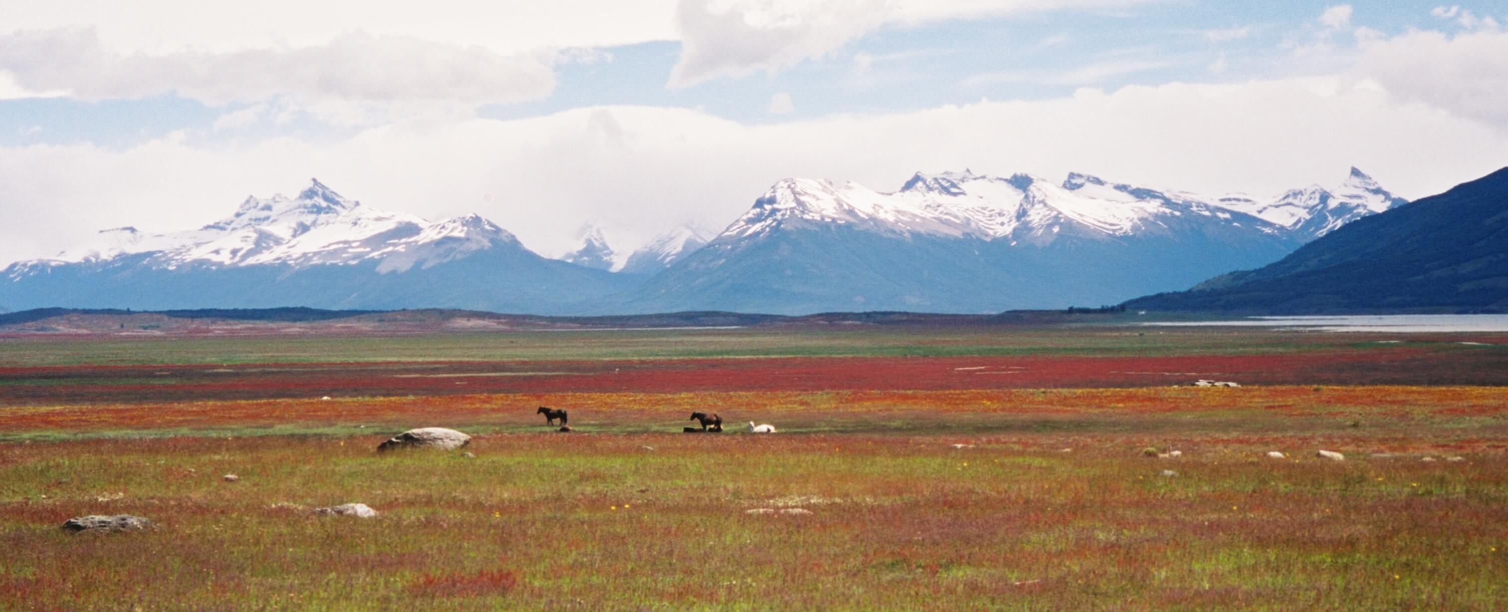 Patagonie1